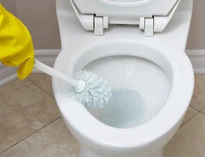 Cara Ampuh Bebaskan Toilet Dari Lalat