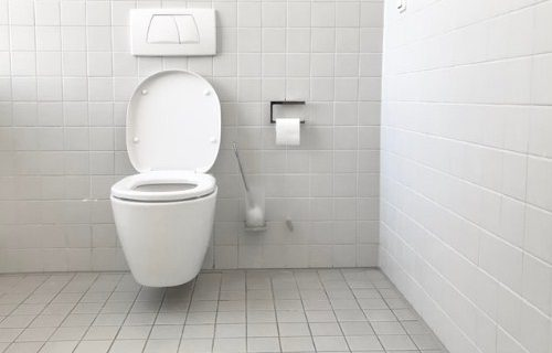 Kriteria Toilet Tidak Sehat Dan Menjadi Sarang Bakteri