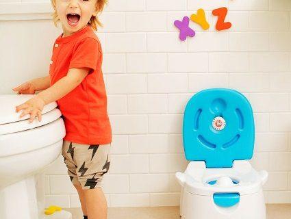 6 Tips Agar Toilet Training Lancar dan Sukses