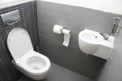 Ini Dia Trik Membangun dan Membuat Toilet Kering dan Bersih